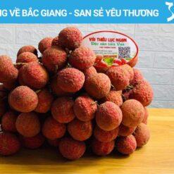 Vai-thieu-Luc-Ngan-Bac-Giang-la-san-pham-dau-tien-cua-Viet-Nam