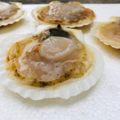 so diep nhat lecon seafoods 1